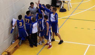 infantil local alcorcon basket